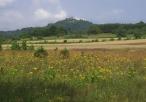 Widok na rezerwat przyrody Góra Zborów