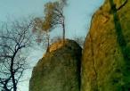 Drzewa porastające skalny szczyt