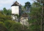 Widok na zamek w Ojcowie
