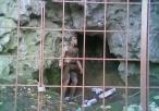 Widok na jaskinię Biśnik i wystawę archeologiczną