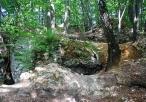 Widok na ruiny zamku na Ostrężniku
