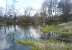 Rzeka Warta od strony Błoni