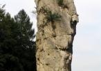 Maczuga Herkulesa (widok z tyłu)