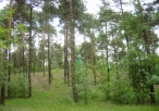 Rezerwat Borek