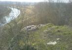 Widok z cypla Skałki Balika w stronę Częstochowy