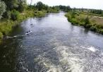Spływ kajakowy po rzece Pilicy
