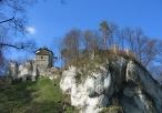 Zamek w Ojcowie z oddali
