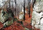Ostańce skalne na terenie rezerwatu