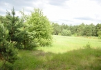 Okolice rezerwatu Borek