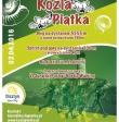 Biegi krosowo-górskie w Olsztynie