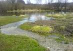 Źródło przy rzece od strony Błoni