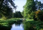 Rzeka Białka w okolicy Koniecpola