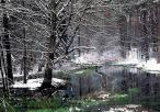 Okresowe Źródła Zdarzeń w rezerwacie Ostrężnik - zimą