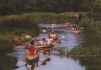 Spływ kajakowy w okolicy Koniecpola