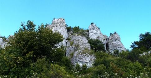 Rzędkowice, Jura Krakowsko-Częstochowska, fot. Wojciech Babicz