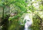 Widok na Rzekę Dłubnię w parku krajobrazowym